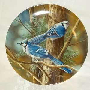 Other - Collector's Fine China Plate
